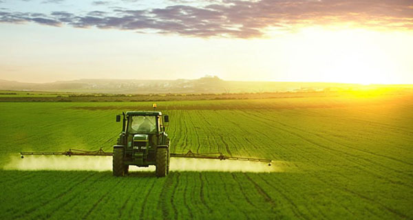 Alberta ag sector jobs down 18.7% in four years: ATB
