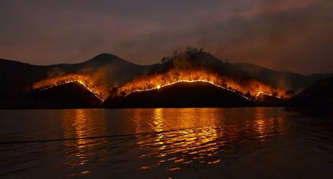 COVID-19 could reduce wildfire risk this season: expert